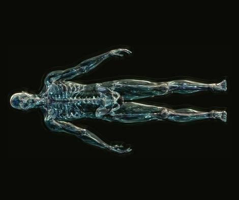 skeleton_1280